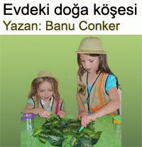 Evdeki do�a k��esi� Banu Conker